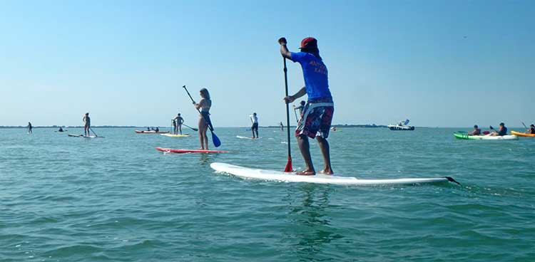 stand up paddle fouras rochefort la rochelle charente maritime.jpg